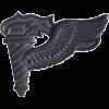 Black Metal Badge Pathfinder