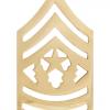 No-Shine Rank (NS-111) Command Sergeant Major (E-9)