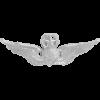 NS-306, No-Shine Badge Master Aircraft Crewman