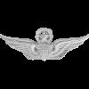 NS-303, No-Shine Badge Master Aviator
