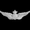 NS-305, No-Shine Badge Senior Aircraft Crewman