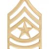 No-Shine Rank (NS-110) Sergeant Major (E-9)