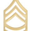No-Shine Rank (NS-107) Sergeant First Class (E-7)