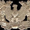 No-Shine Warrant Officer Cap Device
